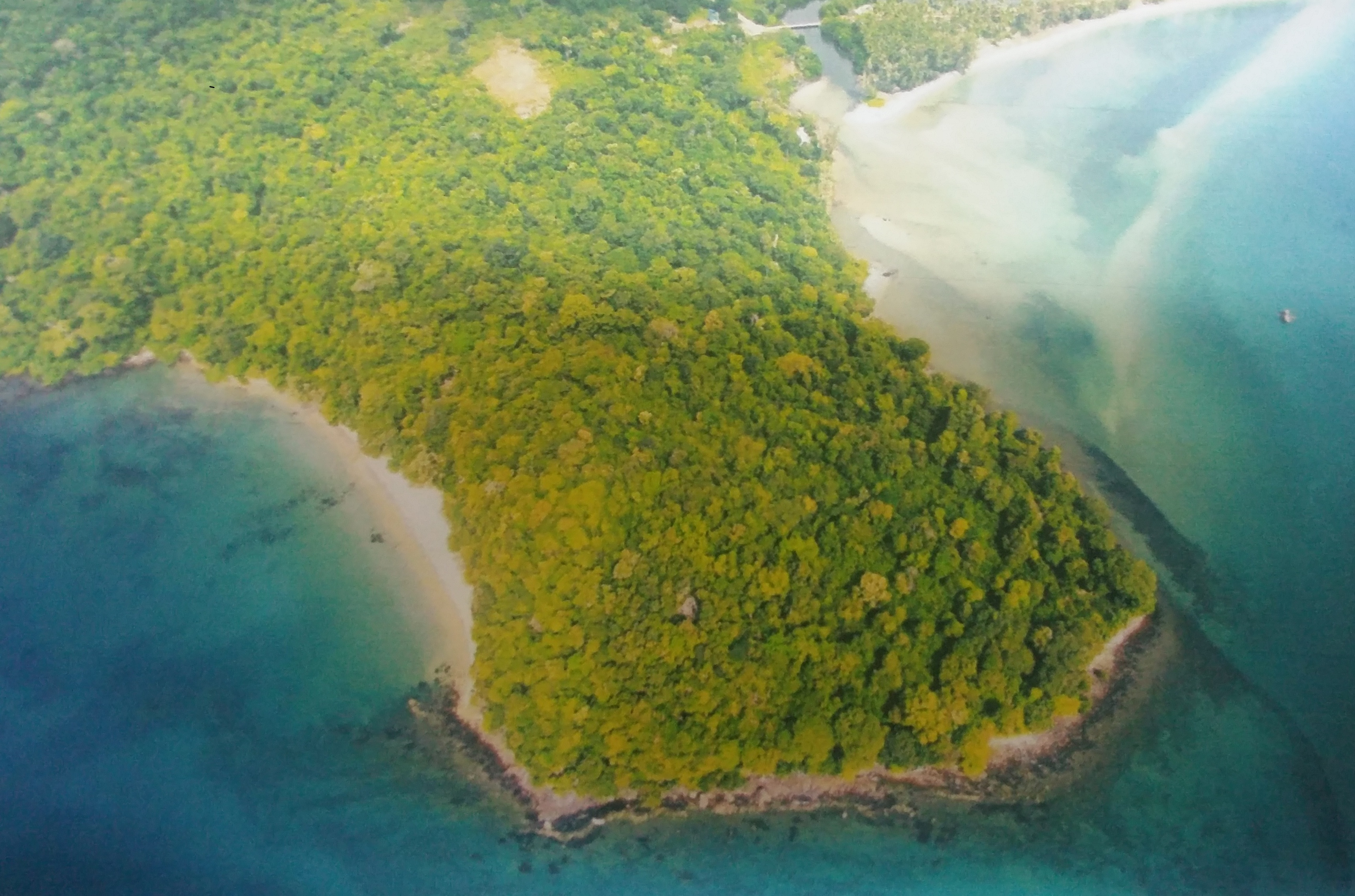 Land for Sale (Next to the Beach)